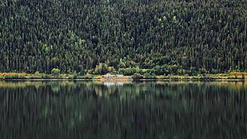 Berg & Bomen reflectie van
