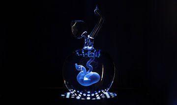 Ongeboren kind in glas van Angelique van Kreij
