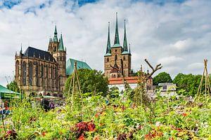 Erfurtkathedraal en kerk van St. Severus