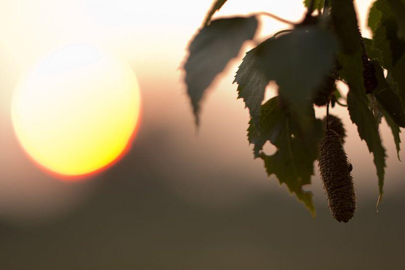 Zonsondergang van Patrick Brouwers