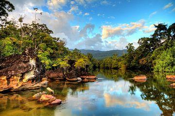 Masoala tropische rivier von Dennis van de Water