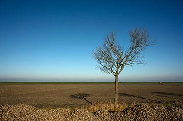 Minimalisme op het Hoogeland van Groningen van Bo Scheeringa Photography