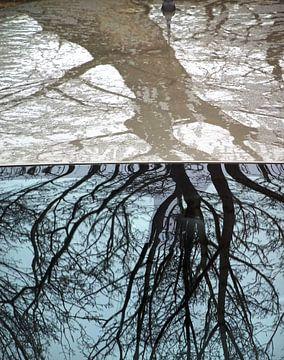 Urban Reflections 103 van MoArt (Maurice Heuts)