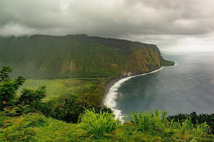 Waipio Valley Hawaii van Jim De Sitter