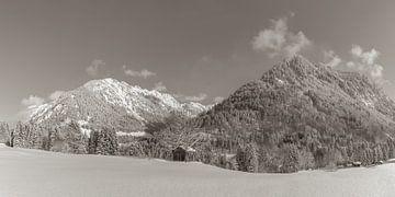 Sneeuwlandschap van Walter G. Allgöwer