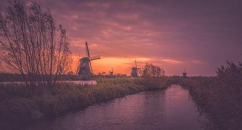 Het land van de molens van Joris Pannemans - Loris Photography
