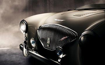 Austin Healey 100M Le Mans registry 1954 van Thomas Boudewijn