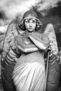 Staring angel van Willem Havenaar