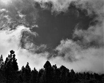Cloudbreeze von Marije Zwart