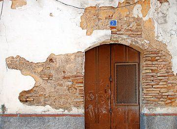 Deur in Sanlucar: de krokodil van Sigrid Klop