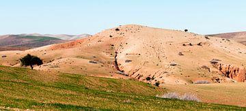De heuvel bij het Atlasgebergte van