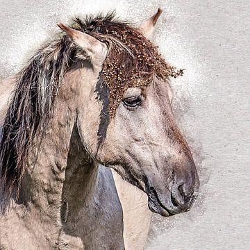 Portret van een prachtig konikpaard van Fotografie Jeronimo