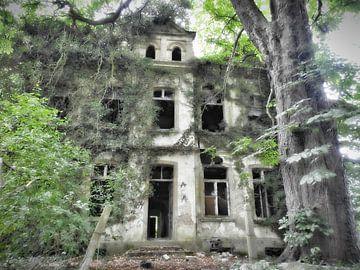 """""""verlaten huis, spookhuis"""" von Pascal Engelbarts"""