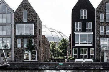 Haarlem Wake-Up | Spaarne Haarlem van heidi borgart