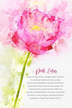 Roze Lotus van Theodor Decker