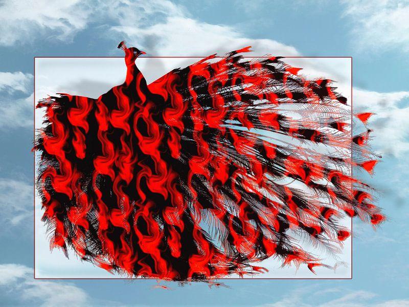 Artistic Red Peacock van Yvon van der Wijk