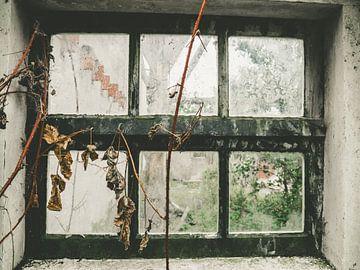 Zukunftsfenster von Martijn Tilroe