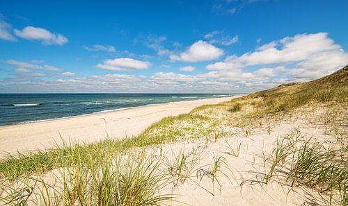 Coastline Sylt
