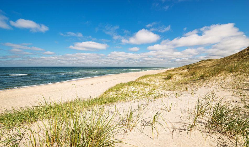 Küstenlandschaft Sylt von Dirk Thoms
