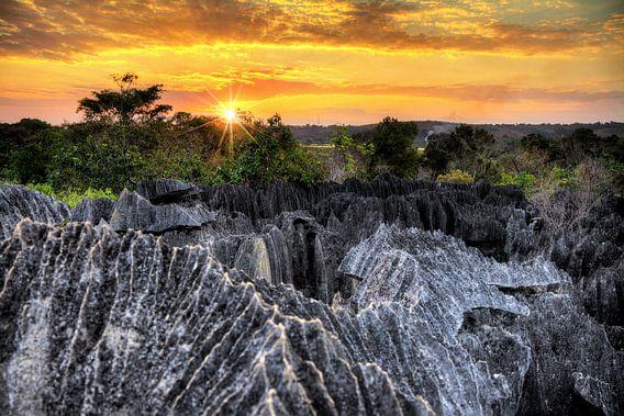 Tsingy Madagaskar zonsondergang van Dennis van de Water
