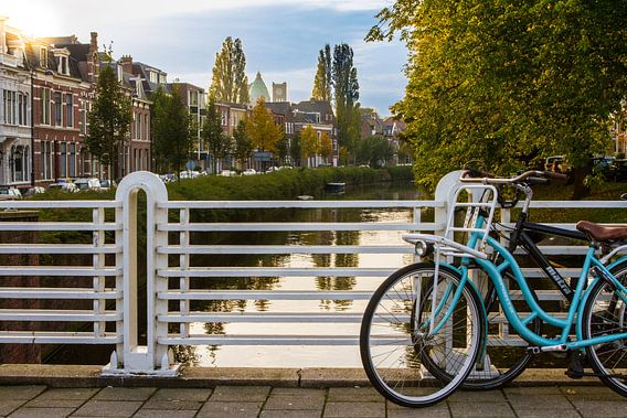 Typisch Haarlem van Leon Weggelaar