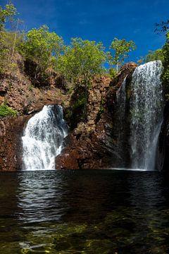 Waterval in Litchfield Nationaal park van