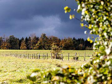 Ein heftiges Unwetter zieht auf von Harald Schottner