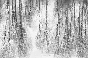 Bewogen reflectie van Ellen Middelkoop
