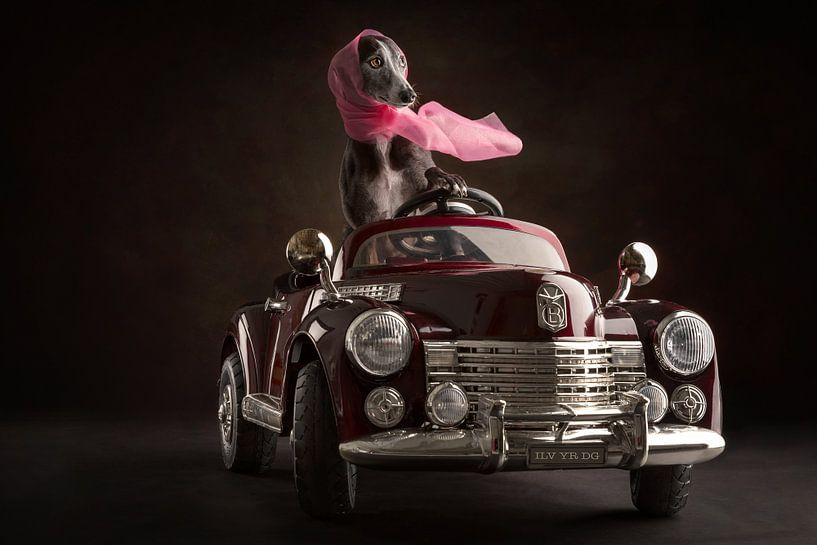 Oldtimer met hond van Nuelle Flipse