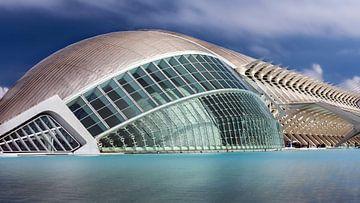 Valencia - City of Arts and Sciences van