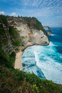 Nusa Penida Kelingking Beach van Ellis Peeters