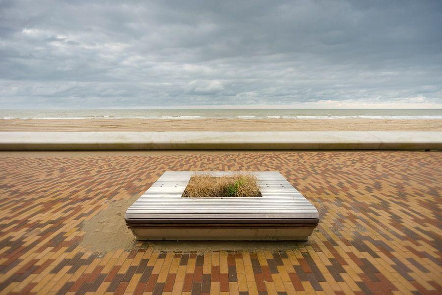 Zeedijk in Wenduine, België.