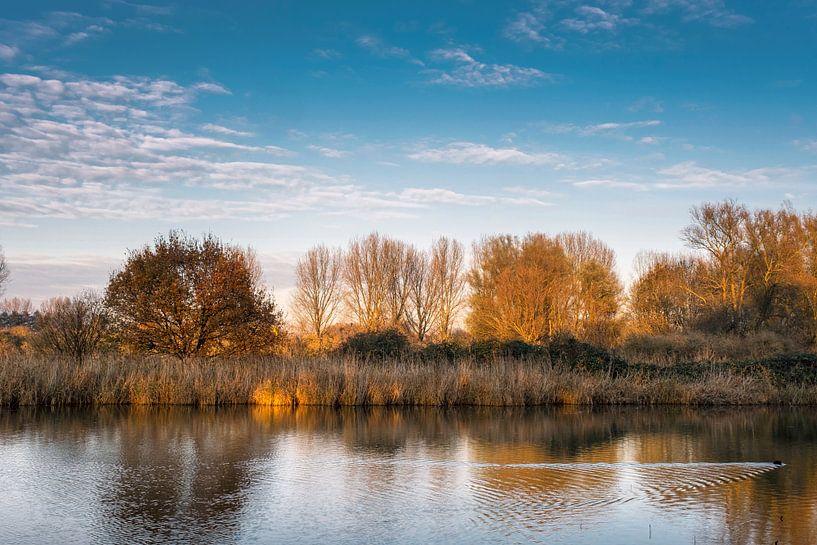 herfst kleuren weerspiegeld in de stille wateren van een meer in de buurt van Rotterdam Nederland van Tjeerd Kruse