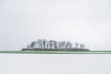 Aprilse grillen in Haspengouw van visitlimburg