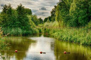 Stilleven van rivier en groen