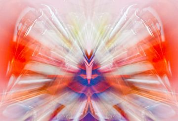 Kleur in beweging 2 van