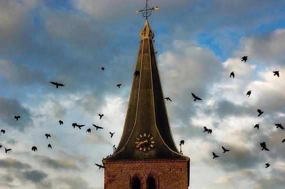 Kraaien rond de kerktoren