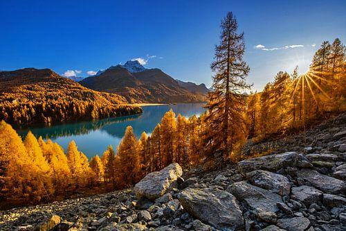 Herbst am Silser See in der Schweiz
