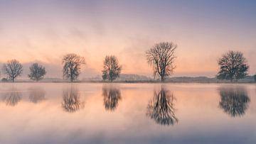 Magischer Morgen von Diana Venis-Kerkhoven