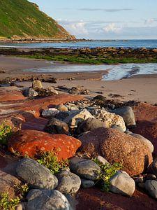 Ostküste Schottlands von Anna Windig