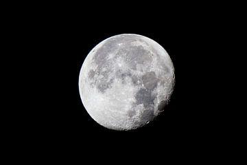 Moon van