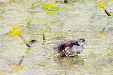 Pasgeboren waterhoentje met gele plomp (schilderij) van Art by Jeronimo