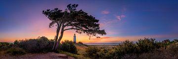 Morgenrot am Leuchtturm Dornbusch auf der Insel Hiddensee. Panoramabild. von Voss Fine Art Fotografie