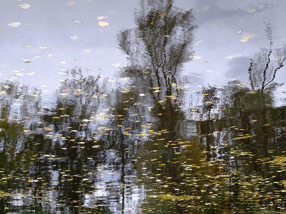 Urban Reflections 149