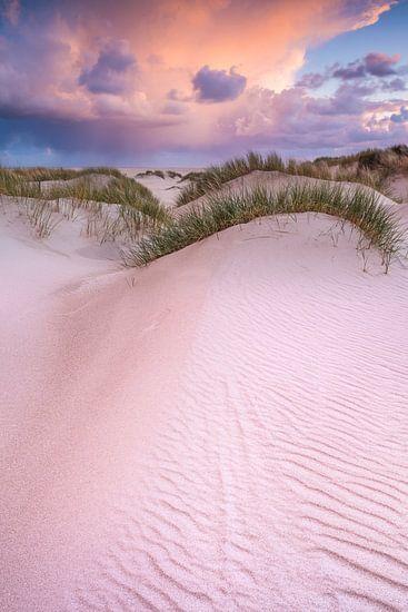 Duinen op Texel van Bob Luijks