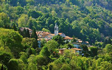 Tronzano - an Italian Mountain Village van Gisela Scheffbuch