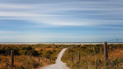 Duinpad naar het strand en de zee Schiermonnikoog
