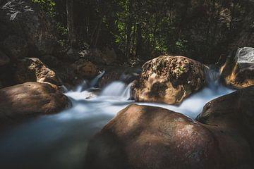 Stromende bergrivier met mistig water en mystiek zonlicht van Fotografiecor .nl