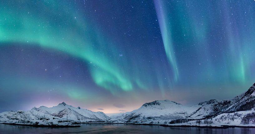 Nordlichter über den Lofoten in Norwegen von Sjoerd van der Wal