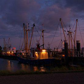 Visssersboot in haven Lauwersmeer van tiny brok